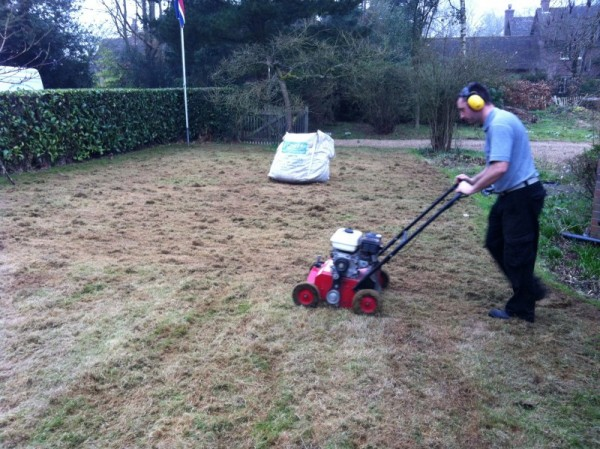 Scarify in two directions to remove as much thatch as possible.
