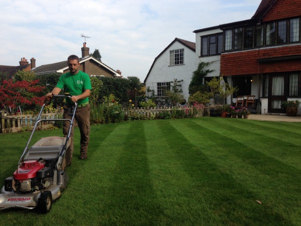 Grass cutting contracts available