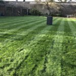 Grass cutting Surrey Total Lawn Care